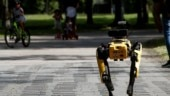 Singapore deploys robot dog to encourage people to practice social distancing