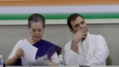 Sachin Pilot vs Ashok Gehlot: Is lack of fulltime president cause of Congress's Rajasthan woes?
