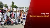 New Farm Bills 2020: Why Are Farmers Protesting in India?