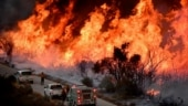 US: Wind-driven wildfires continue to wreak havoc in West Coast state