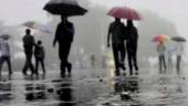 Karnataka: Heavy rains lash Belagavi