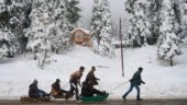 Snowfall brings cheers to locals, tourists in Jammu and Kashmir