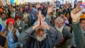 Haryana govt report links Covid surge in rural Punjab & Haryana to farmers protest