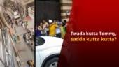 Twada Kutta Tommy?: Neighbours Fight Over Calling Pet Dog 'Kutta'