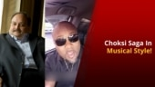 Meet The Dominican Who Sings About Mehul Choksi