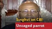 An uncaged parrot is not supposed to become a vulture: Abhishek Manu Singhvi after CBI got Chidambaram's custody