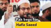 Hafiz Saeed behind bars but with Imran Khan at his disposal?