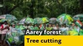 Tree cutting begins at Mumbai's Aarey forest, activists protest