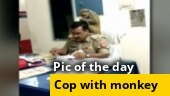 Image of the day: UP cop gets grooming session from monkey