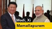 PM Modi, Xi Jinping to meet in Mamallapuram; Rajnath Singh slams Opposition over Rafale puja row; more