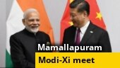 Mamallapuram all set to host PM Modi-Xi Jinping's 2nd informal summit; Ranbaxy brothers in dock; more
