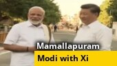 Watch: PM Modi receives Xi Jinping in Mamallapuram, guides him through the ancient monuments