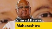 BJP-Sena should form govt: Sharad Pawar confirms NCP will sit in opposition
