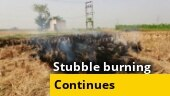Tussle for power continues in Maharashtra, Delhi chokes as stubble burning remains unabated, more