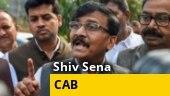 Vote bank politics is not right: Shiv Sena's Sanjay Raut on Citizenship bill