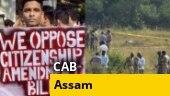Citizenship bill in Rajya Sabha, Hyderabad encounter case in SC, more