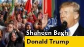 Round 2 of Shaheen Bagh talks; Donald Trump's India visit; more