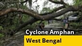 Cyclone Amphan aftermath in Bengal: Houses damaged, trees uprooted, more