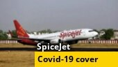 SpiceJet to offer Covid-19 insurance cover for passengers