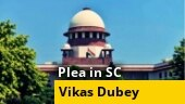 Hours before Vikas Dubey's killing, plea filed in SC against 'fake encounters'