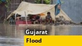 Heavy rains wreak havoc in Gujarat; 1,900 shifted