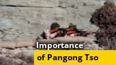 Explained: Strategic importance of south Pangong Tso area