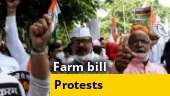 Opposition parties protest against farms bills and suspension of Rajya Sabha MPs