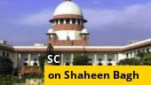 What does SC verdict on Shaheen Bagh protests mean?