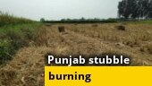 Ground report: Why Punjab is an epicentre of stubble burning