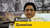Mayawati calls Ballia shooting incident alarming; stubble burning menace; more