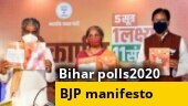 Bihar elections 2020: BJP poll promises 19 lakh jobs