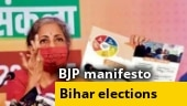 BJP manifesto for Bihar: Party promises 19 lakh jobs, bringing lentils under MSP