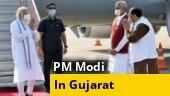 PM Modi inaugurates 'Arogya Van' in Gujarat's Kevadiya