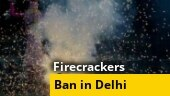 NGT imposes ban on sale, use of crackers in NCR