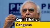 Exclusive: Congress not effective Opposition now, says Kapil Sibal