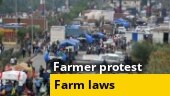 Watch: Decoding farmers' agitation over India's new farm laws