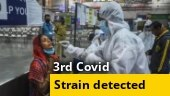 3rd Covid strain from South Africa found in UK