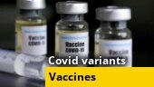 Vaccines will work against new Covid variants: Govt