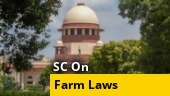 Hold farm laws or we will: 'Disappointed' SC tells Centre