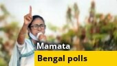 TMC questions 8-phase polls in West Bengal