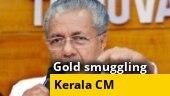 Gold smuggling case: Swapna Suresh revealed Kerala CM Pinarayi Vijayan's involvement, Customs tells HC