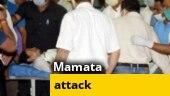 Bengal polls: Was Mamata Banerjee manhandled in Nandigram?