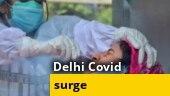 813 new coronavirus cases in Delhi, highest this year