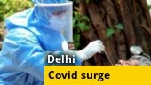 Delhi sees highest daily surge of 19,486 Covid-19 cases, 141 deaths