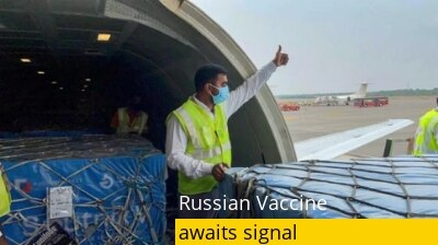 Sputnik V: First batch of Russian vaccine awaits green signal. What's causing delay?