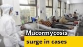 Covid-19: Mucormycosis or black fungus cases reported in several states of India