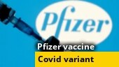 Pfizer to govt: Vaccine highly effective on variant prevalent in India