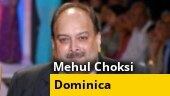 Who was the mystery woman with Mehul Choksi?