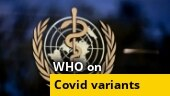 WHO assigns labels to Covid-19 variants