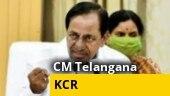 Watch   Siddipet collector touches Telangana CM KCR's feet, draws criticism